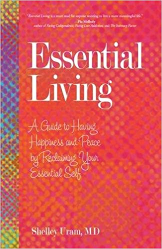 Books marriage separation advice marriage crisis manager essential living a guide to having happiness and peace by reclaiming your essential self by shelley uram i saw uram speak at a meadows behavior health solutioingenieria Image collections